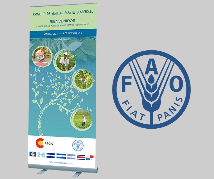 Rollup Proyecto FAO